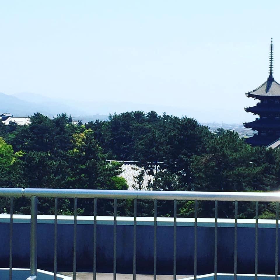 Le mont Wakakusa